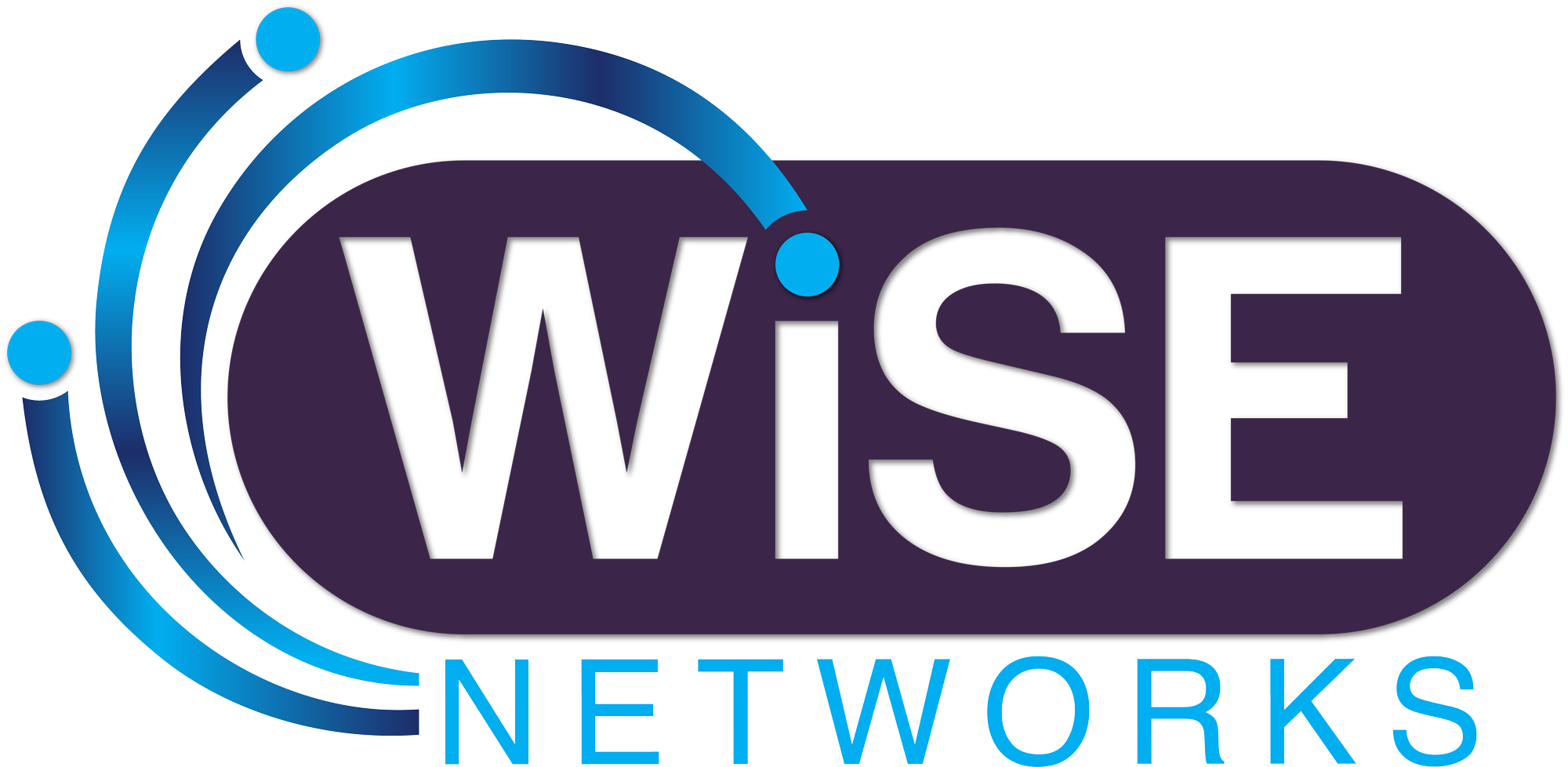 WiSE Networks